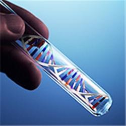 ДНК диагностика гликогеноза